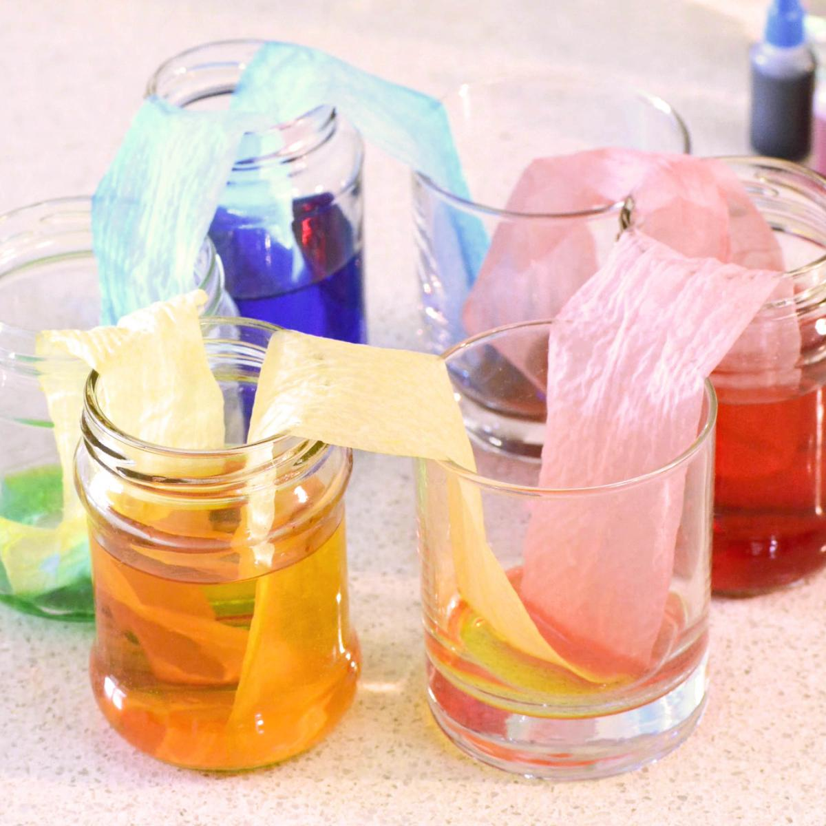 walking rainbow. jars with coloured water with paper towel
